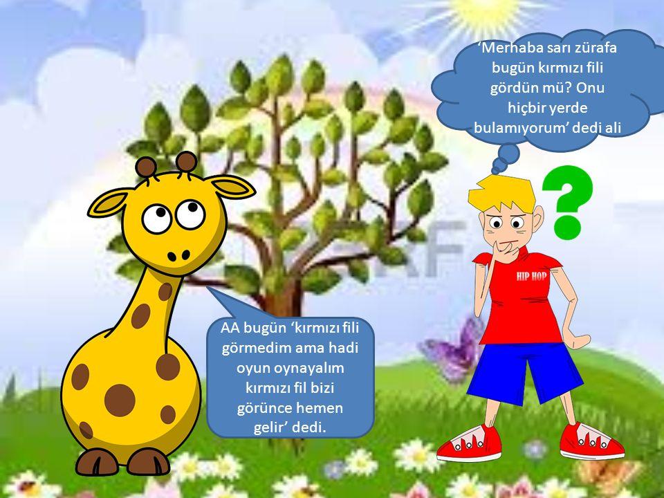 Sarı zürafa ile Ali bir süre oynadılar.Ama hala kırmızı fil yoktu.