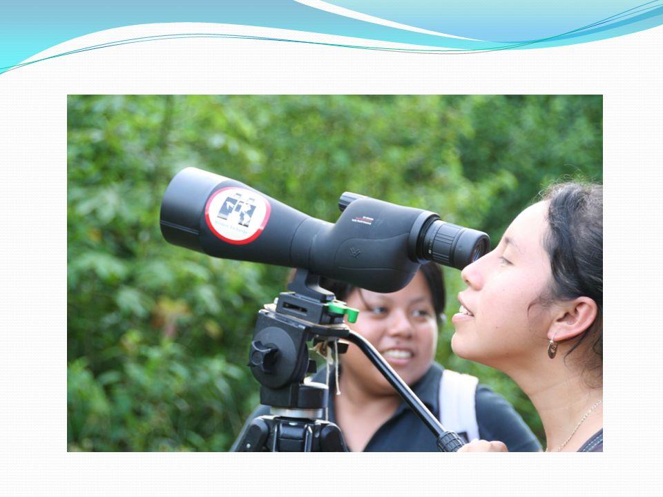 Fotoğraf makinesi: Orman gibi kapalı alanlarda 75-300 mmlik objektif kullanılır.