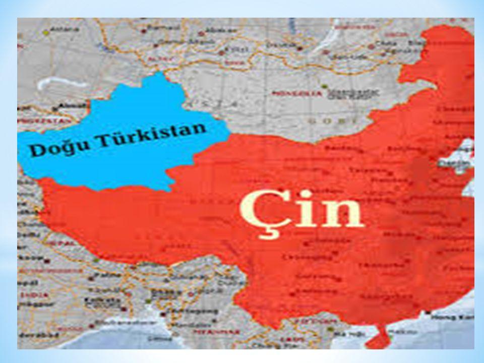 Doğu Türkistan uranyum, bakır, platin, gümüş kalay, mika, zümrüt, kömür ve petrol gibi yeraltı kaynakları bakımından zengin bir ülkedir.
