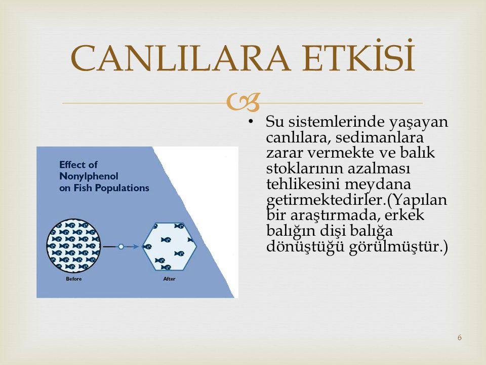  17 ATIKSU ARITMA TESİSLERİ