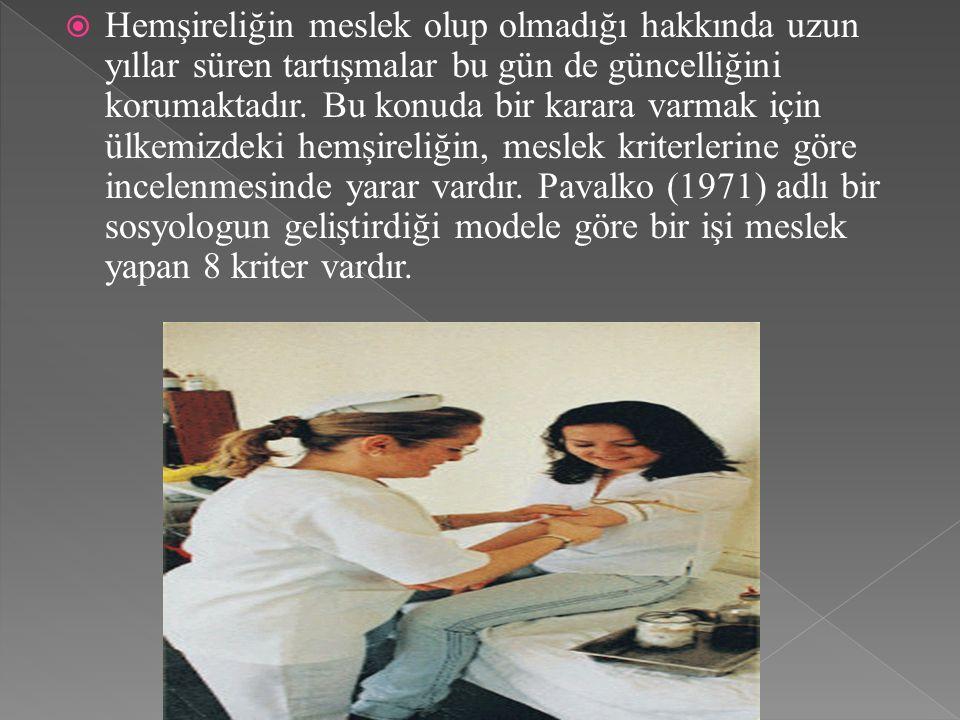  Teorik bilgi  Yapılan işin temel sosyal değerlere uygunluğu  Eğitim süresi  Motivasyon  Otonomi  Bağlılık bilinci  Birlik bilinci  Meslek Ahlakı Yasasıdır.