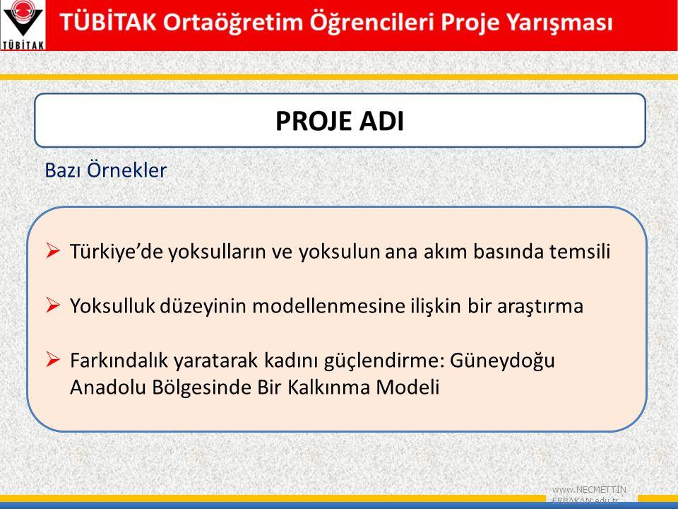 www.NECMETTİN ERBAKAN.edu.tr Bazı Örnekler  Türkiye'de yoksulların ve yoksulun ana akım basında temsili  Yoksulluk düzeyinin modellenmesine ilişkin bir araştırma  Farkındalık yaratarak kadını güçlendirme: Güneydoğu Anadolu Bölgesinde Bir Kalkınma Modeli