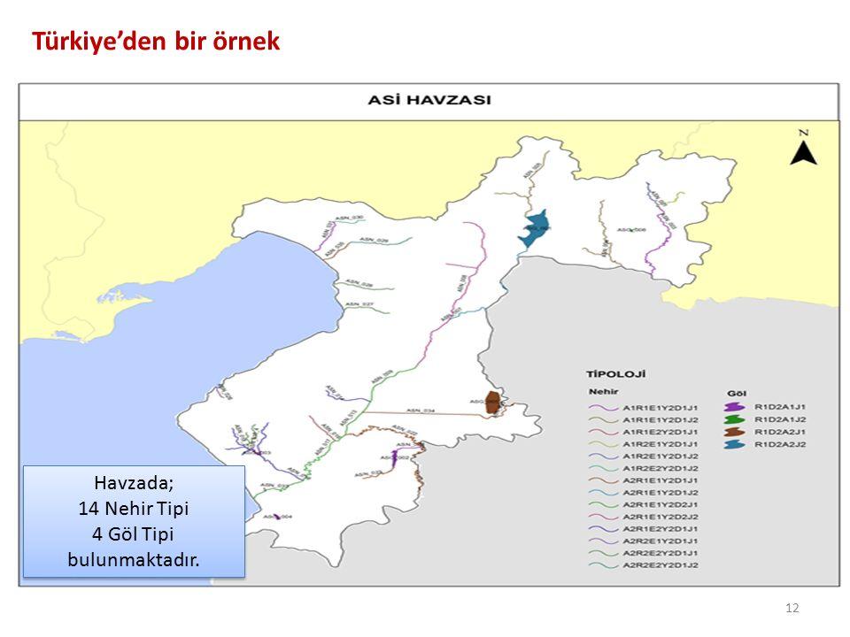 Türkiye'den bir örnek 12 Havzada; 14 Nehir Tipi 4 Göl Tipi bulunmaktadır. Havzada; 14 Nehir Tipi 4 Göl Tipi bulunmaktadır.