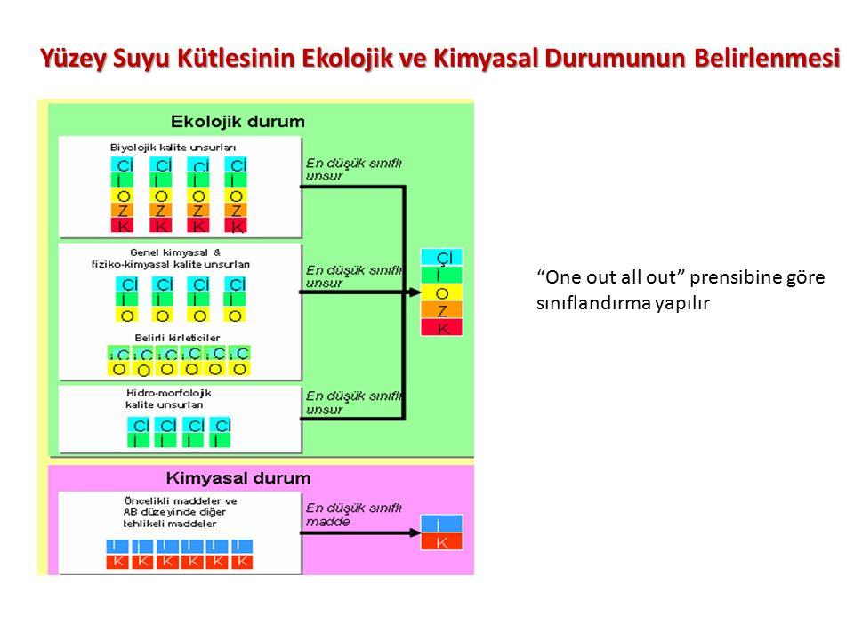 Yüzey Suyu Kütlesinin Ekolojik ve Kimyasal Durumunun Belirlenmesi One out all out prensibine göre sınıflandırma yapılır