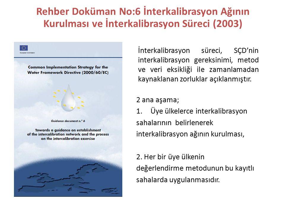 Rehber Doküman No:6 İnterkalibrasyon Ağının Kurulması ve İnterkalibrasyon Süreci (2003) İnterkalibrasyon süreci, SÇD'nin interkalibrasyon gereksinimi, metod ve veri eksikliği ile zamanlamadan kaynaklanan zorluklar açıklanmıştır.