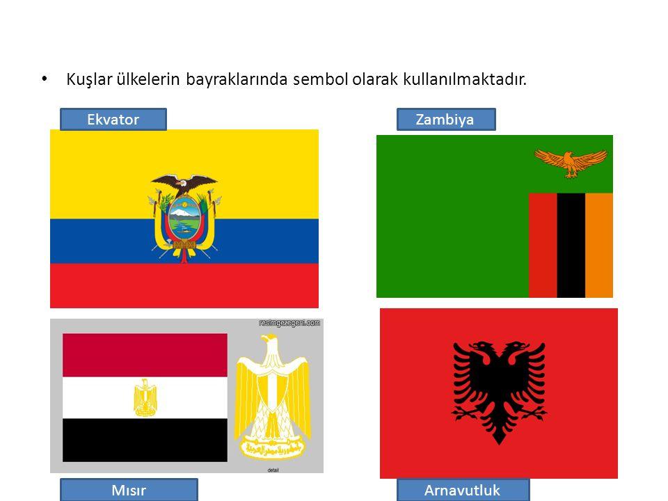 Kuşlar ülkelerin bayraklarında sembol olarak kullanılmaktadır. Ekvator Mısır Zambiya Arnavutluk