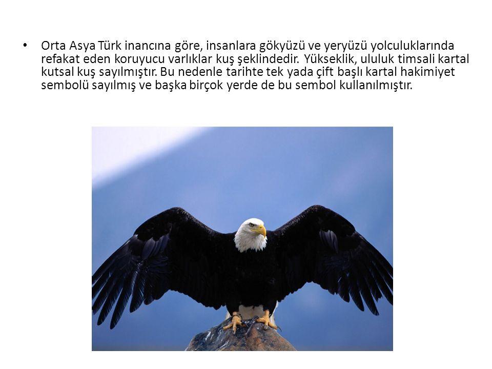 Orta Asya Türk inancına göre, insanlara gökyüzü ve yeryüzü yolculuklarında refakat eden koruyucu varlıklar kuş şeklindedir. Yükseklik, ululuk timsali