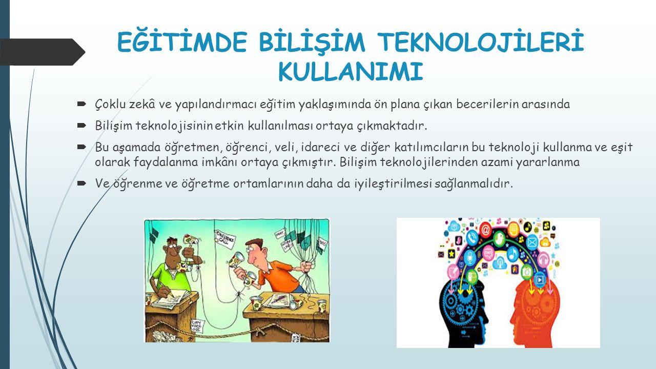 Türkiye'de Bilişim Teknolojilerinin Durumu Birey ve haneler arasındaki sayısal uçurumun ölçülmesinde kullanılan genel göstergeler; bilişim teknolojilerine erişimi olanlar ve erişimi olmayanlardır.
