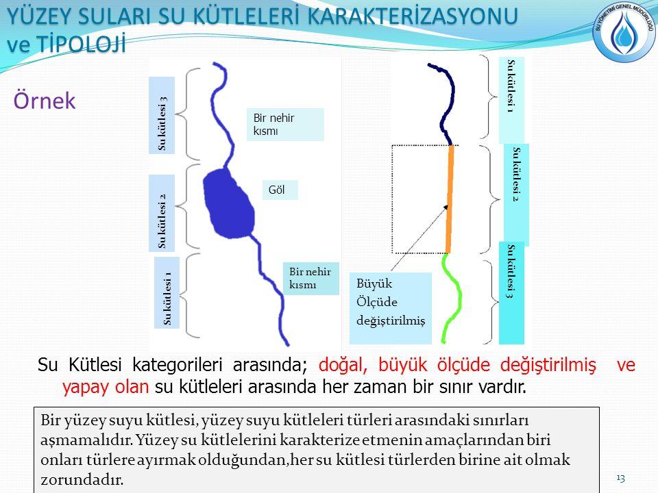 Örnek Su Kütlesi kategorileri arasında; doğal, büyük ölçüde değiştirilmiş ve yapay olan su kütleleri arasında her zaman bir sınır vardır. Büyük Ölçüde