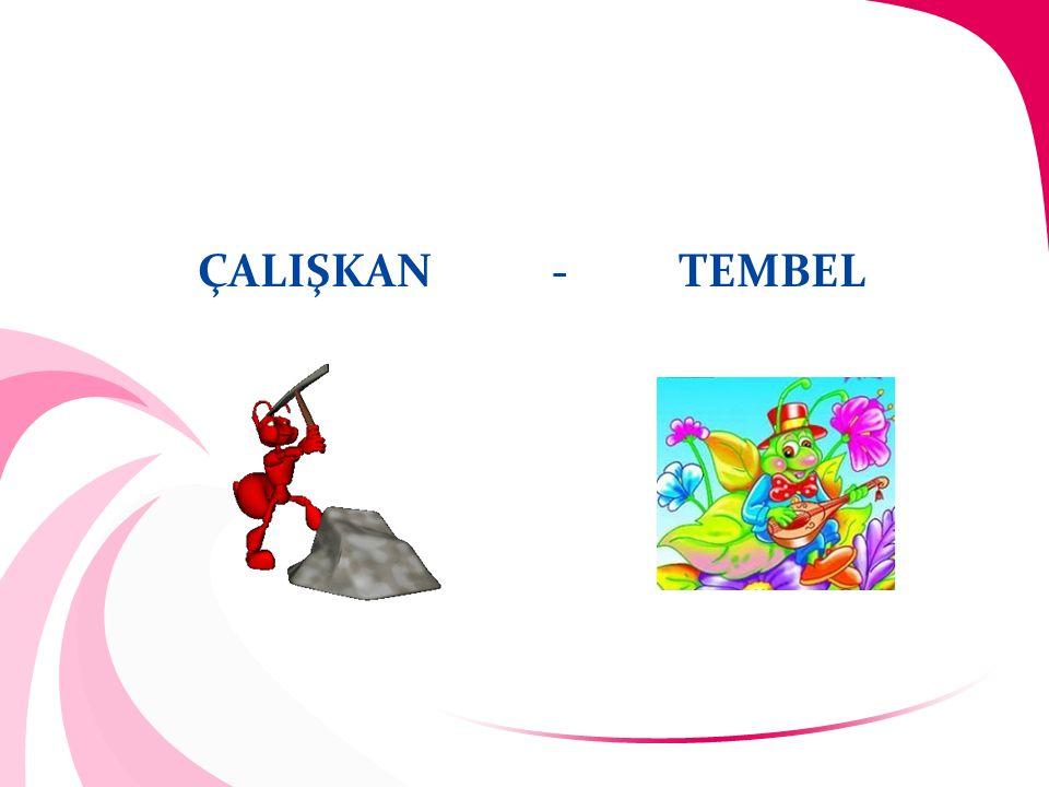 ÇALIŞKAN - TEMBEL