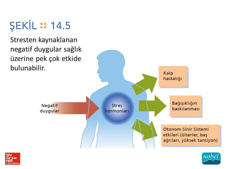 Stresten kaynaklanan negatif duygular sağlık üzerine pek çok etkide bulunabilir.