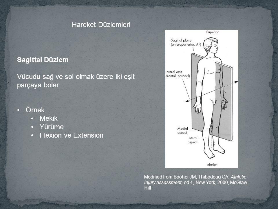 Sagittal Düzlem Vücudu sağ ve sol olmak üzere iki eşit parçaya böler Örnek Mekik Yürüme Flexion ve Extension Hareket Düzlemleri Modified from Booher JM, Thibodeau GA: Athletic injury assessment, ed 4, New York, 2000, McGraw- Hill