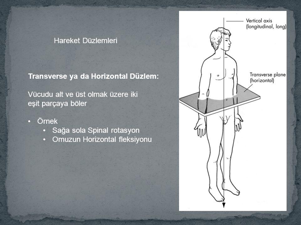 Transverse ya da Horizontal Düzlem: Vücudu alt ve üst olmak üzere iki eşit parçaya böler Örnek Sağa sola Spinal rotasyon Omuzun Horizontal fleksiyonu Hareket Düzlemleri