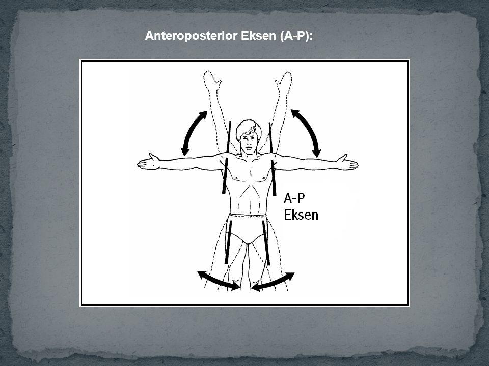 Anteroposterior Eksen (A-P):