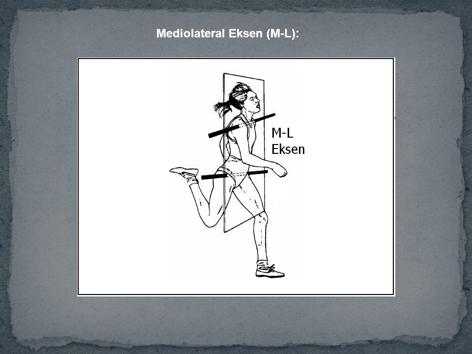 Mediolateral Eksen (M-L):