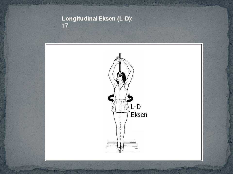 Longitudinal Eksen (L-D): 17