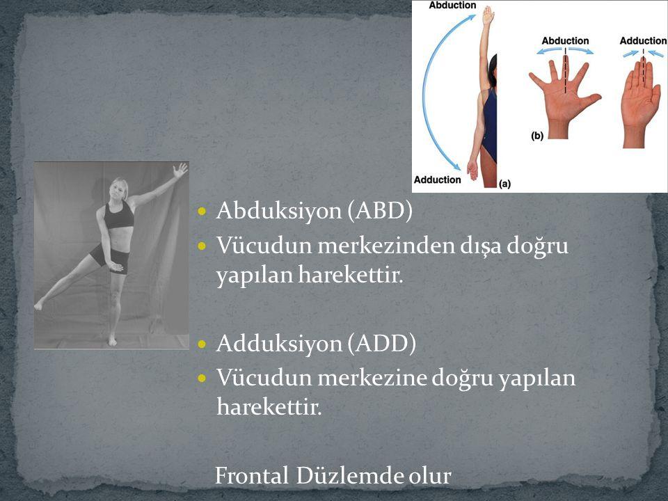 Abduksiyon (ABD) Vücudun merkezinden dışa doğru yapılan harekettir. Adduksiyon (ADD) Vücudun merkezine doğru yapılan harekettir. Frontal Düzlemde olur