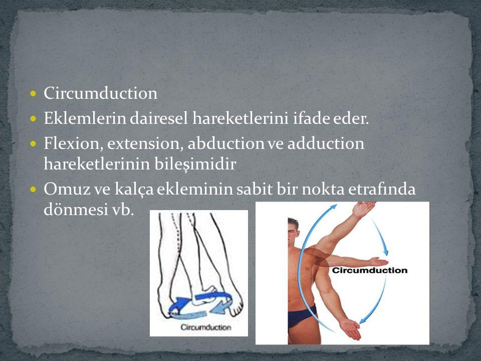 Circumduction Eklemlerin dairesel hareketlerini ifade eder. Flexion, extension, abduction ve adduction hareketlerinin bileşimidir Omuz ve kalça eklemi