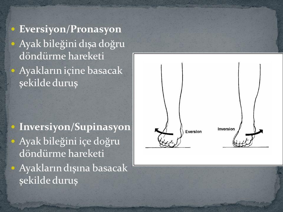 Eversiyon/Pronasyon Ayak bileğini dışa doğru döndürme hareketi Ayakların içine basacak şekilde duruş Inversiyon/Supinasyon Ayak bileğini içe doğru döndürme hareketi Ayakların dışına basacak şekilde duruş
