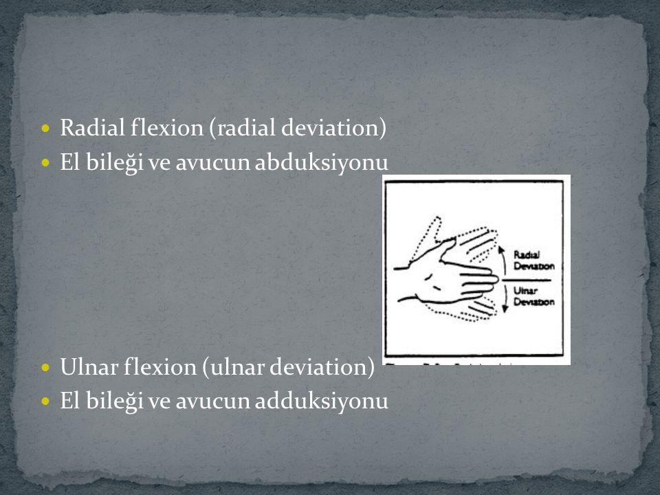 Radial flexion (radial deviation) El bileği ve avucun abduksiyonu Ulnar flexion (ulnar deviation) El bileği ve avucun adduksiyonu