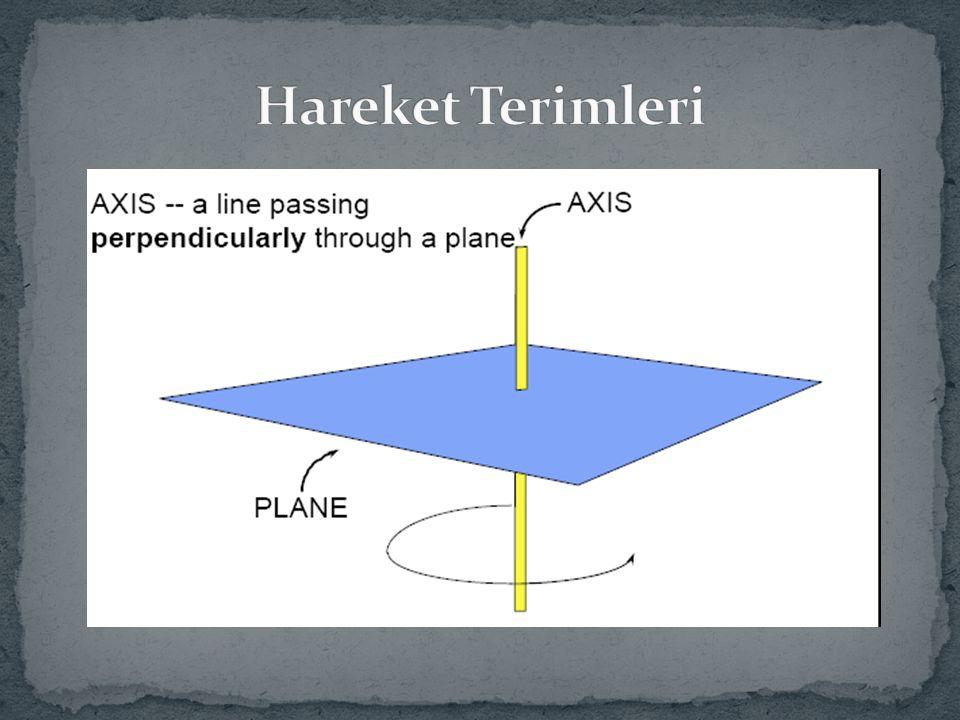 Horizontal abduction Humerus'un horizontal düzlemde vücudun orta hattından yanlara doğru hareket ettirilmesi Horizontal adduction Humerus'un horizontal düzlemde vücudun orta hattına doğru hareket ettirilmesi