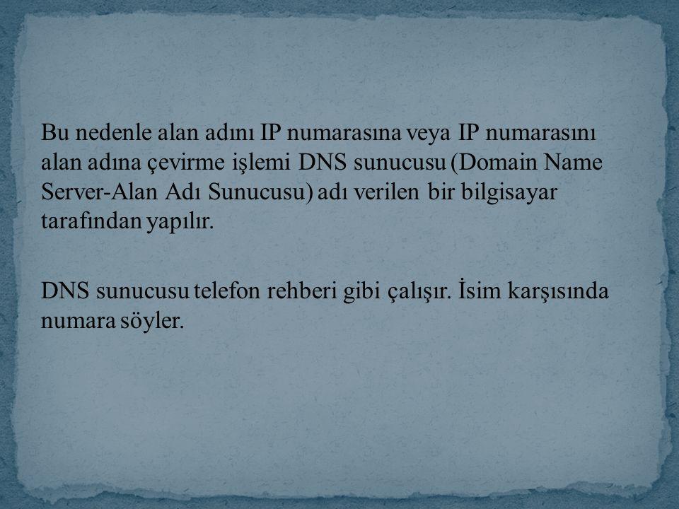 Bu nedenle alan adını IP numarasına veya IP numarasını alan adına çevirme işlemi DNS sunucusu (Domain Name Server-Alan Adı Sunucusu) adı verilen bir bilgisayar tarafından yapılır.