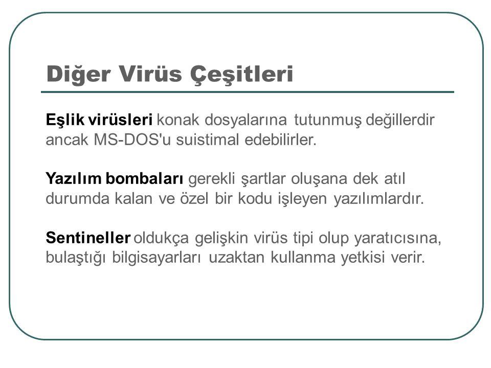 Diğer Virüs Çeşitleri Eşlik virüsleri konak dosyalarına tutunmuş değillerdir ancak MS-DOS'u suistimal edebilirler. Yazılım bombaları gerekli şartlar o