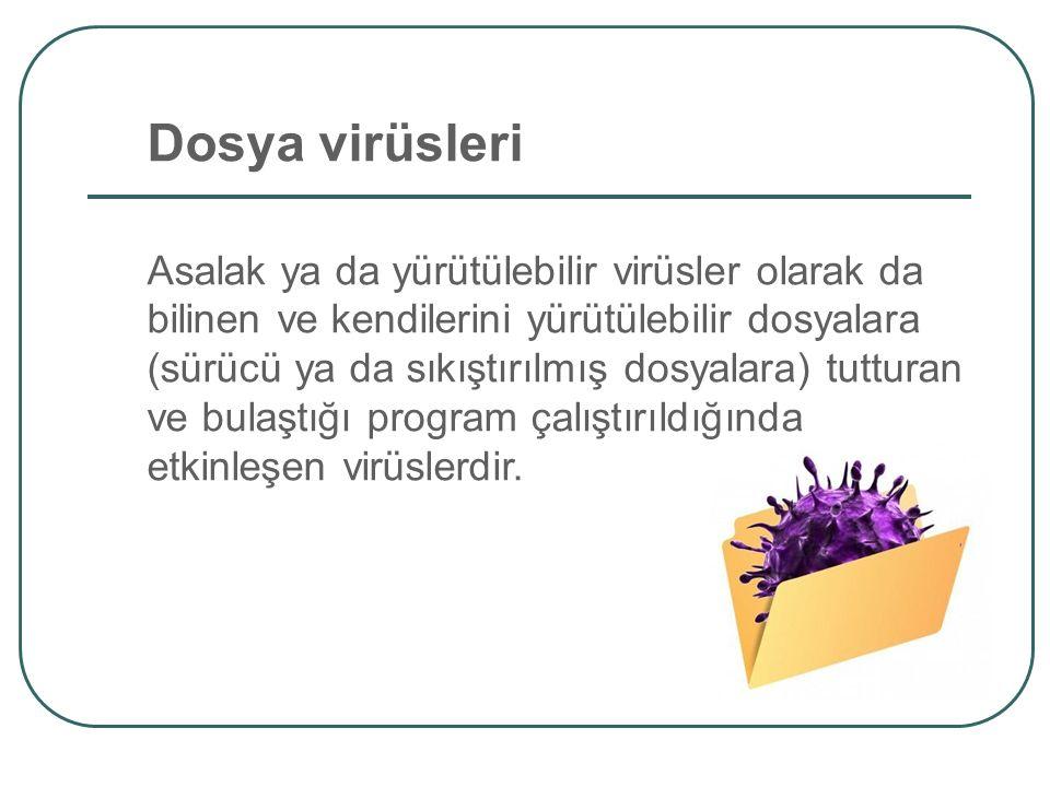 Dosya virüsleri Asalak ya da yürütülebilir virüsler olarak da bilinen ve kendilerini yürütülebilir dosyalara (sürücü ya da sıkıştırılmış dosyalara) tu