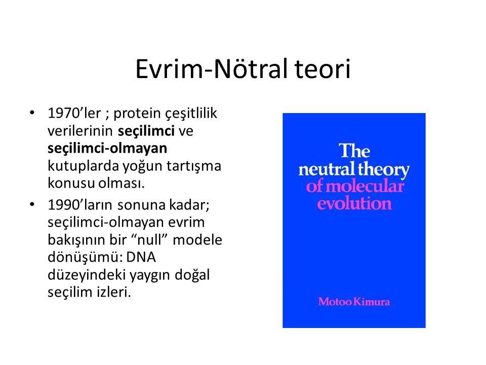 Evrim-Nötral teori 1970'ler ; protein çeşitlilik verilerinin seçilimci ve seçilimci-olmayan kutuplarda yoğun tartışma konusu olması. 1990'ların sonuna