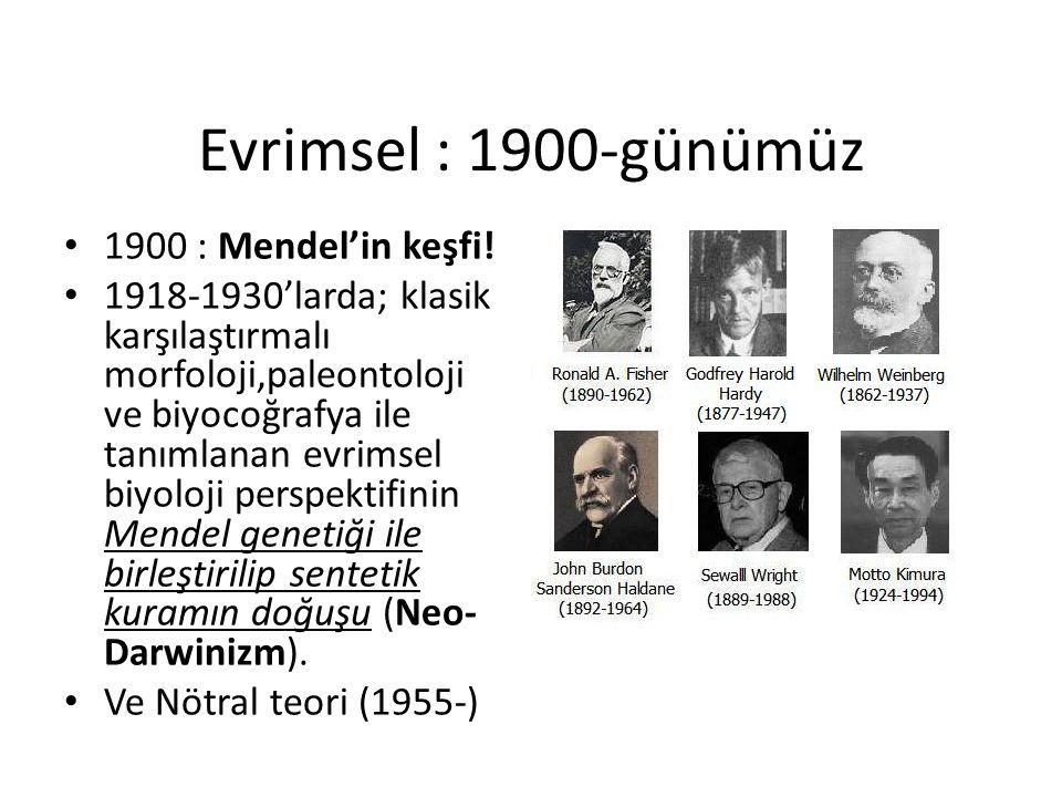 Evrimsel : 1900-günümüz 1900 : Mendel'in keşfi! 1918-1930'larda; klasik karşılaştırmalı morfoloji,paleontoloji ve biyocoğrafya ile tanımlanan evrimsel