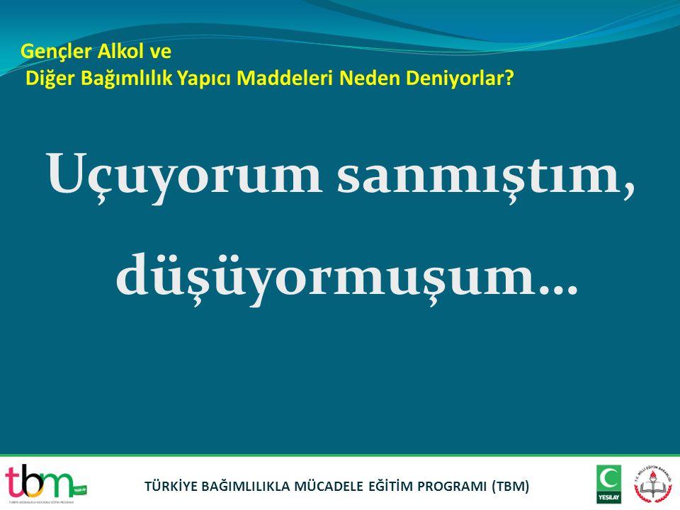 Türkiye'de Alkole Harcanan Para Aile bütçesinin ne kadarı.