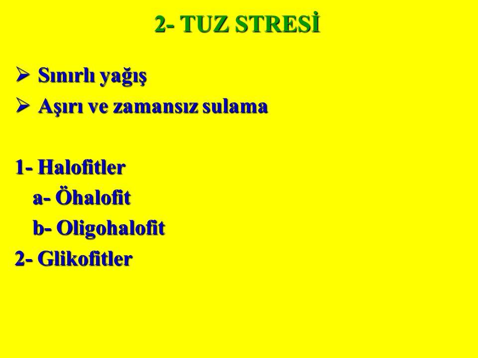 2- TUZ STRESİ  Sınırlı yağış  Aşırı ve zamansız sulama 1- Halofitler a- Öhalofit b- Oligohalofit 2- Glikofitler