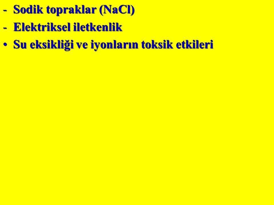 -Sodik topraklar (NaCl) -Elektriksel iletkenlik Su eksikliği ve iyonların toksik etkileriSu eksikliği ve iyonların toksik etkileri