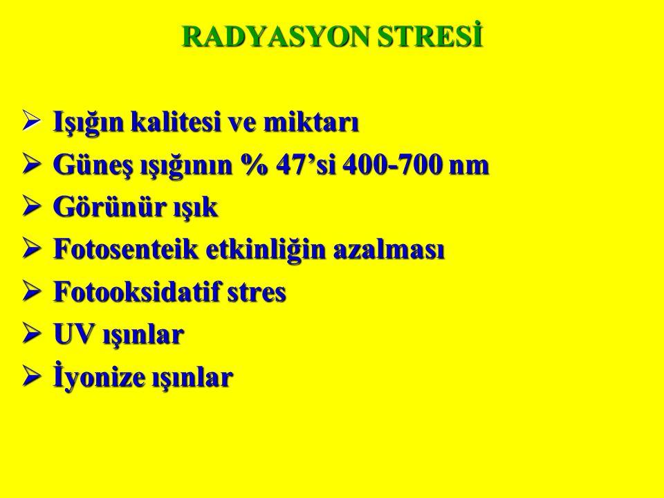 RADYASYON STRESİ  Işığın kalitesi ve miktarı  Güneş ışığının % 47'si 400-700 nm  Görünür ışık  Fotosenteik etkinliğin azalması  Fotooksidatif stres  UV ışınlar  İyonize ışınlar