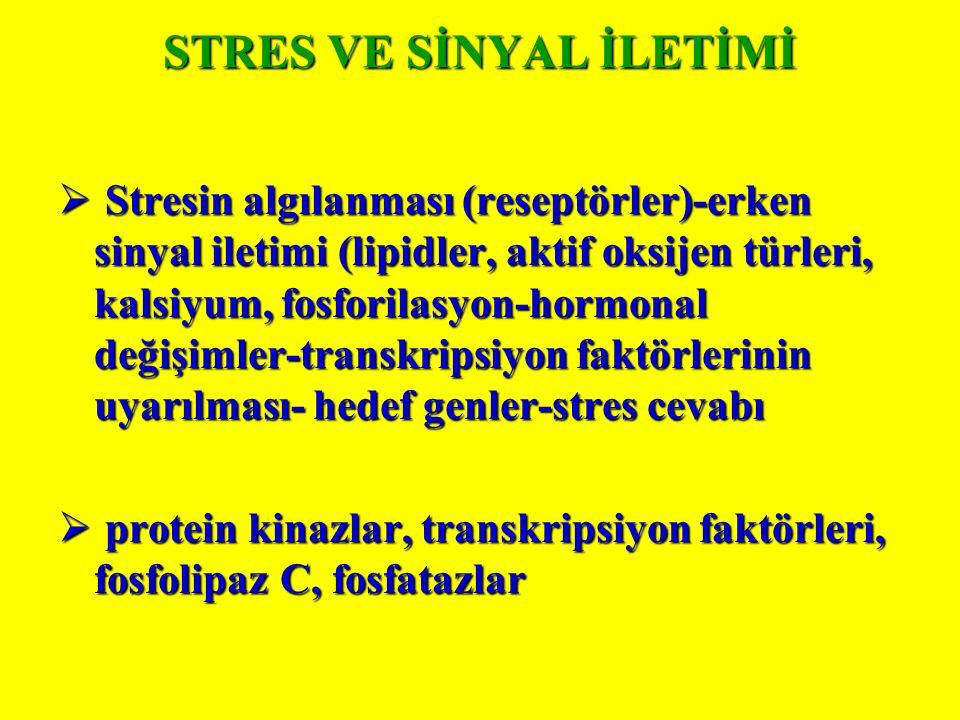 STRES VE SİNYAL İLETİMİ  Stresin algılanması (reseptörler)-erken sinyal iletimi (lipidler, aktif oksijen türleri, kalsiyum, fosforilasyon-hormonal değişimler-transkripsiyon faktörlerinin uyarılması- hedef genler-stres cevabı  protein kinazlar, transkripsiyon faktörleri, fosfolipaz C, fosfatazlar