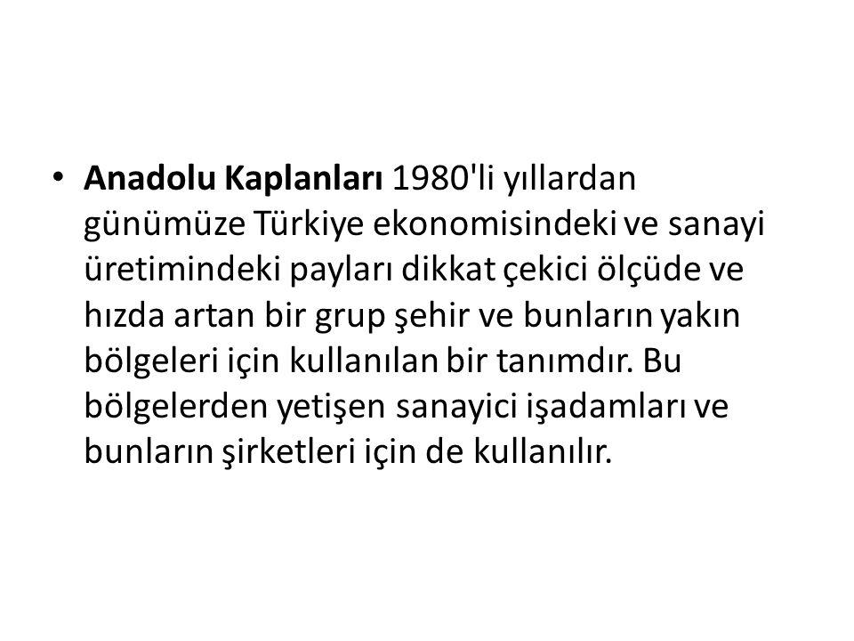Anadolu Kaplanları 1980 li yıllardan günümüze Türkiye ekonomisindeki ve sanayi üretimindeki payları dikkat çekici ölçüde ve hızda artan bir grup şehir ve bunların yakın bölgeleri için kullanılan bir tanımdır.