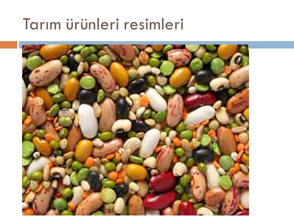 Tarım ürünleri resimleri