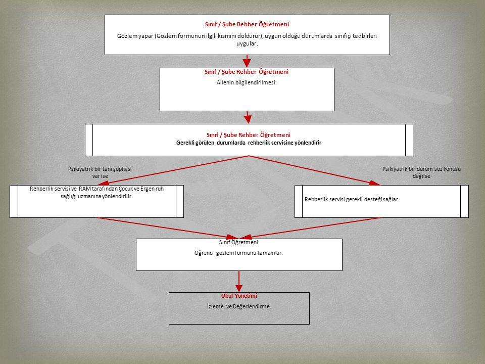 Sınıf / Şube Rehber Öğretmeni Gerekli görülen durumlarda rehberlik servisine yönlendirir Rehberlik servisi ve RAM tarafından Çocuk ve Ergen ruh sağlığ