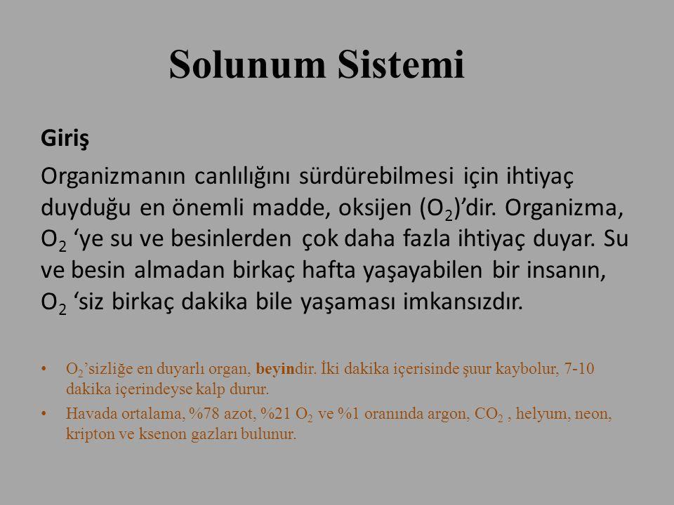 Solunum Sistemi Giriş Organizmanın canlılığını sürdürebilmesi için ihtiyaç duyduğu en önemli madde, oksijen (O 2 )'dir. Organizma, O 2 'ye su ve besin