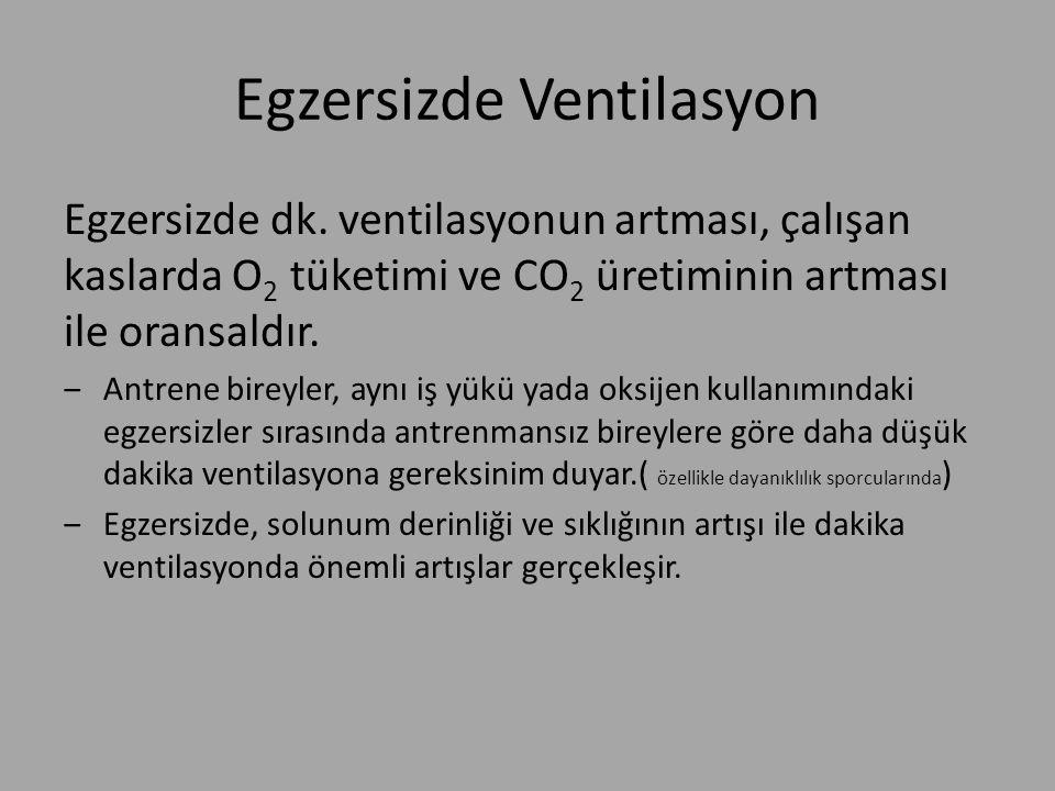 Egzersizde Ventilasyon Egzersizde dk. ventilasyonun artması, çalışan kaslarda O 2 tüketimi ve CO 2 üretiminin artması ile oransaldır. ‒Antrene bireyle