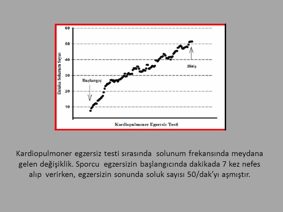 Kardiopulmoner egzersiz testi sırasında solunum frekansında meydana gelen değişiklik. Sporcu egzersizin başlangıcında dakikada 7 kez nefes alıp verirk