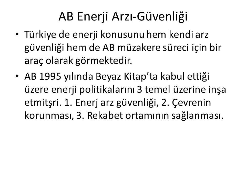 AB Enerji Arzı-Güvenliği Türkiye de enerji konusunu hem kendi arz güvenliği hem de AB müzakere süreci için bir araç olarak görmektedir. AB 1995 yılınd
