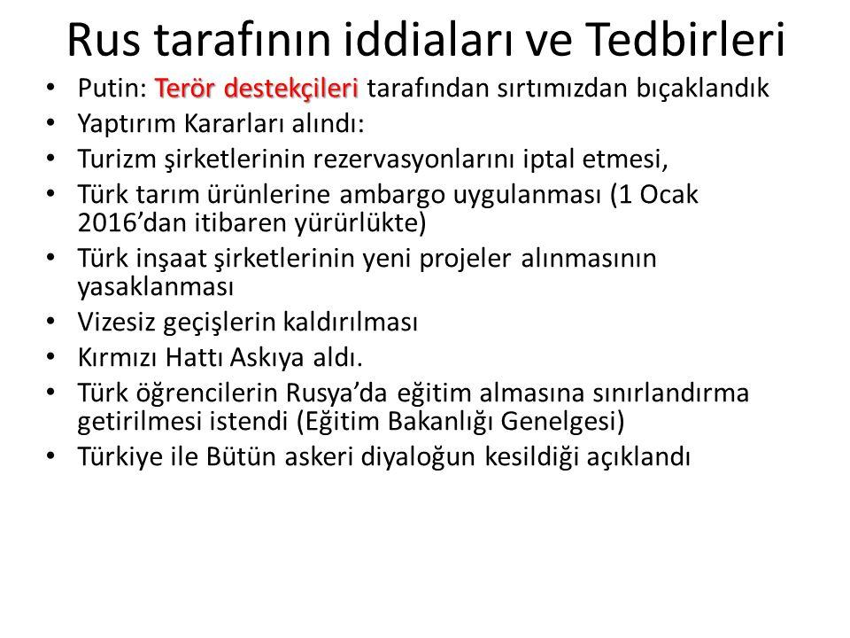 Güney Akım/Türk Akımı, Uçak krizinden sonra akibeti belli değil.