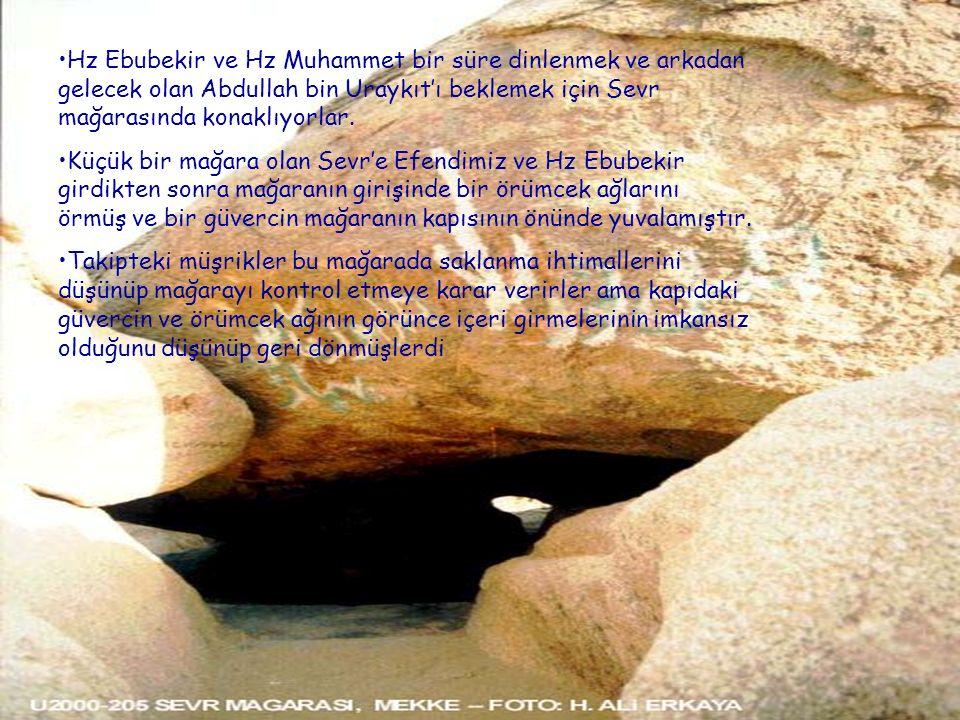 Hz Ebubekir ve Hz Muhammet bir süre dinlenmek ve arkadan gelecek olan Abdullah bin Uraykıt'ı beklemek için Sevr mağarasında konaklıyorlar. Küçük bir m