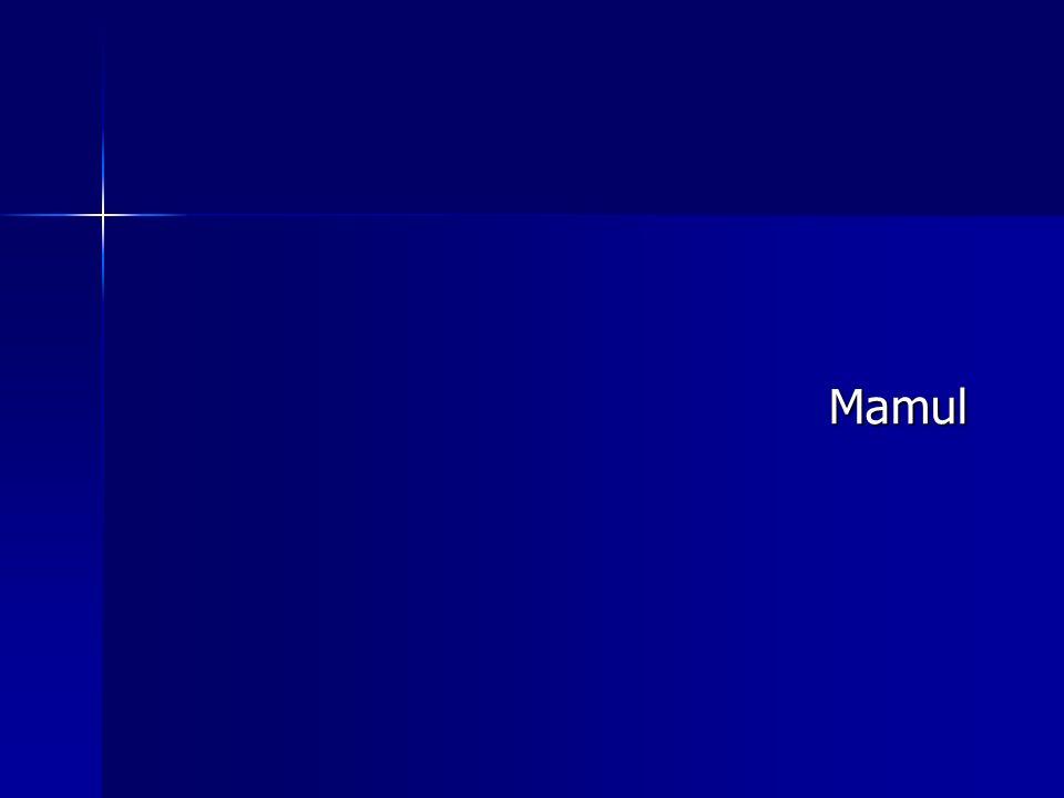 Mamul