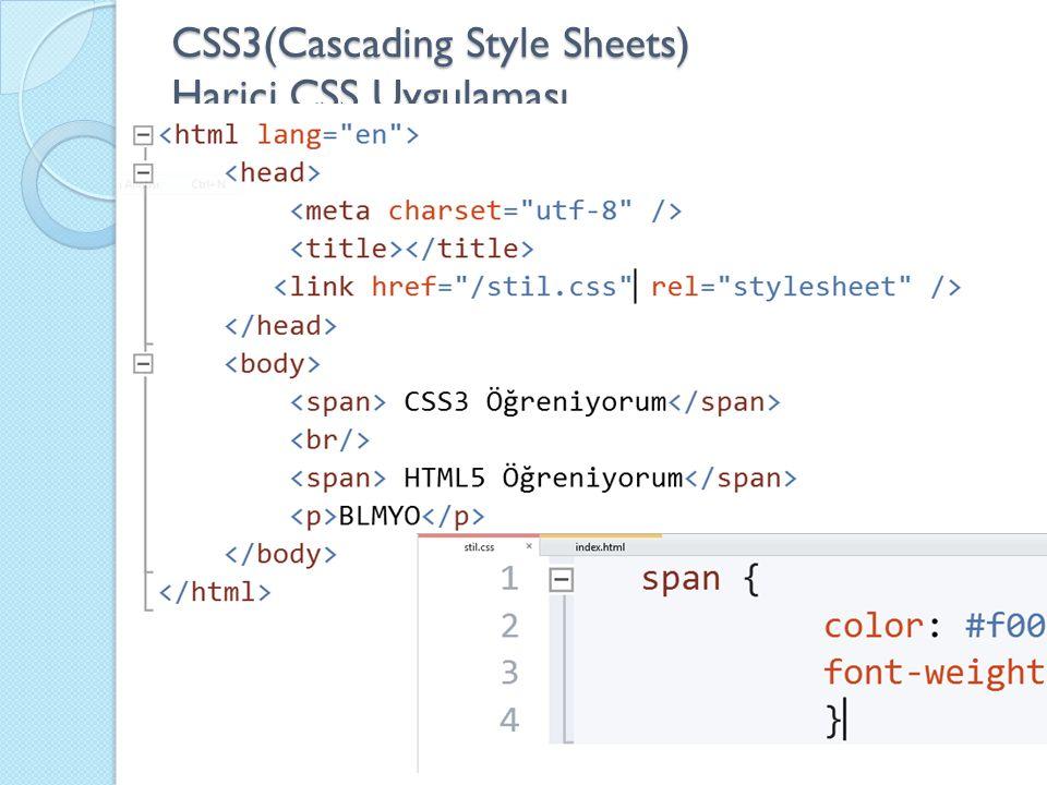 CSS3(Cascading Style Sheets) Harici CSS Uygulaması
