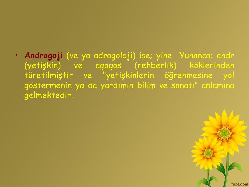 Androgoji (ve ya adragoloji) ise; yine Yunanca; andr (yetişkin) ve agogos (rehberlik) köklerinden türetilmiştir ve