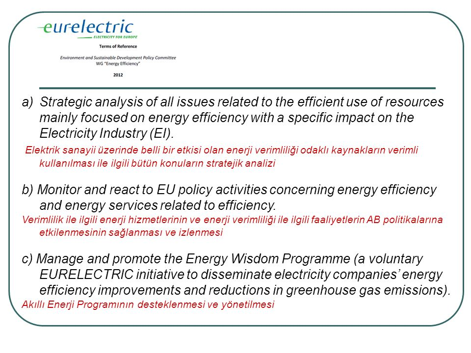 a)Strategic analysis of all issues related to the efficient use of resources mainly focused on energy efficiency with a specific impact on the Electricity Industry (EI).