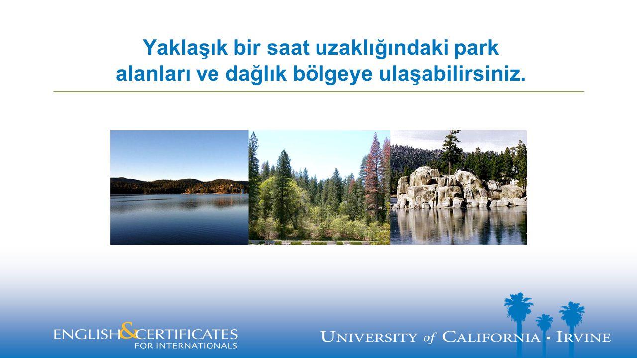 Yaklaşık bir saat uzaklığındaki park alanları ve dağlık bölgeye ulaşabilirsiniz.