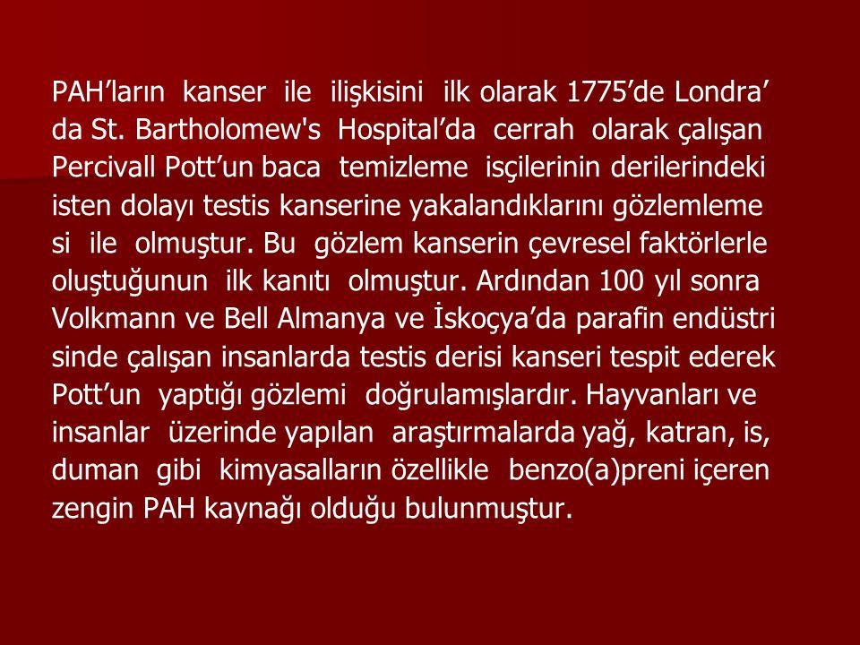 PAH'ların kanser ile ilişkisini ilk olarak 1775'de Londra' da St. Bartholomew's Hospital'da cerrah olarak çalışan Percivall Pott'un baca temizleme isç